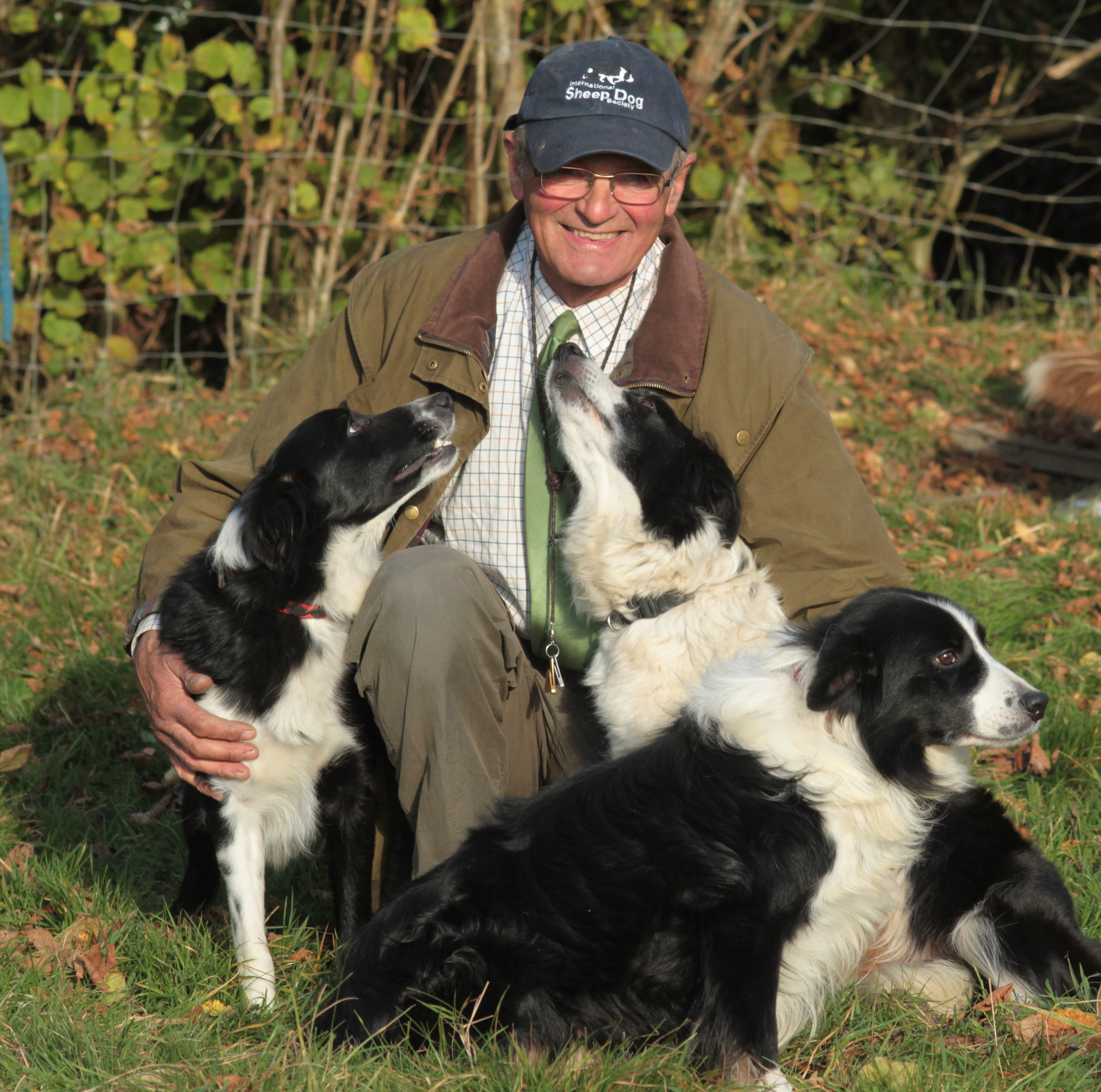 al with his beautiful border collies